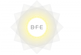 BF Engineering GmbH